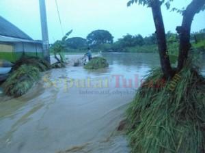 TANAMAN RUSAK : Akibat derasnya arus air, membuat tanaman padi rusak terbawa arus