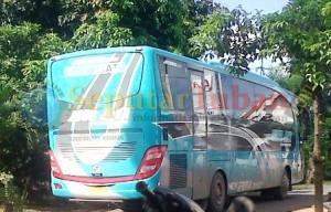 NGEBUT : Bus Pariwisata saat melintas di kawasan Kecamatan Montong dari arah Kecamatan Merakurak