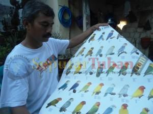 PROSPEK : Singgih Sujianto menunjukkan jenis lovebird