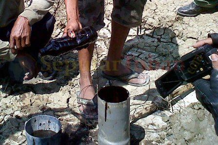 minyak mentah di Desa Kujung, Kecamatan Widang, Kab. Tuban