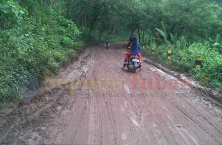 BAHAYA : Badan jalan kawasan Kerawak, Desa Guwoterus, Kecamatan Montong dipenuhi tanah hutan yang terbawa arus air. Hingga membuat kondisi jalan sangat licin