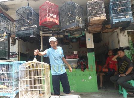 Penjual Burung Tuban