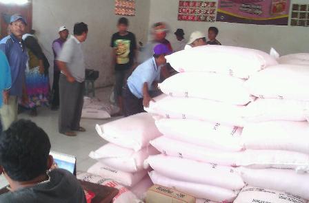 DISERBU : Para petani mengantri pupuk disalah satu kios resmi yang baru mendapatkan kiriman