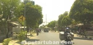 SIA-SIA: Rambu lalu lintas penunjuk kota tujuan yang berada di sebelah selatan traffic light pertigaan Kecamatan Soko, Selasa (24/09/2014) siang, tidak berfungsi karena terhalang pohon. (foto: ARIF AHMAD AKBAR)