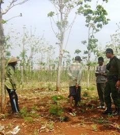 PENDEKATAN: Sejumlah petugas Perhutani Tuban melakukan sosialisasi dengan warga terkait larangan bertani di dalam hutan.