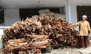 TAK LAKU: Yuni, di antara tumpukan kayu bakar yang kini sepi pembeli, di rumahnya Desa Prunggahan Kulon, Kecamatan Semanding, Rabu (25/03/2015) siang.