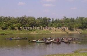 CERDIK : Aktivitas penambangan pasir sungai bengawan solo dengan menggunakan perahu, Rabu (08/07/2015)