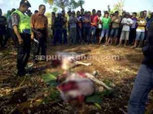 BEGAL SAPI : Inilah kondisi bangkai sapi bekas kawanan pencuri di kawasan hutan Desa Mliwang, Kecamatan Kerek, Kabupaten Tuban, Kamis (16/07/2015) pagi
