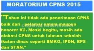 moratorium CPNS