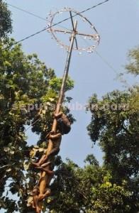 SOLIDARITAS: Anak-anak Desa Gaji, Kecamatan Kerek, dengan bersemangat dan bahu membahu  agar bisa sampai ke atas, dalam ajang lomba panjat pinang yang digelar di desa setempat,  Minggu (06/09/2015).