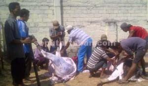 BERBAGI RASA: Usai salat Id jajaran Polres Tuban memotong hewan qurban. Seluruh dagingnya disalurkan kepada warga pinggiran. Sementara ternak qurban lainnya dikirim ke masjid dan sejumlah tempat lainnya, Kamis (24/09/2015) pagi.