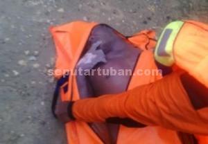 Membengkak : Kondisi korban usai dievakuasi tim SAR gabungan