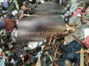 Mengenaskan : Bayi di temukan diatas tumpukan sampah. Polisi masih melakukan penyelidikan atas kejadian ini