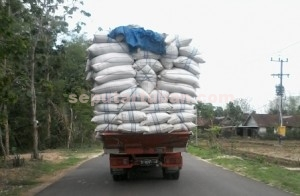 Dibiarkan : Truk pengangkut sekam padi masih sliweran di jalanan Tuban