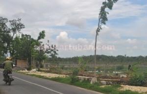 FASILITAS BARU : Inilah lokasi hutan kota yang akan dibangun senilai lebih dari setengah miliar rupiah