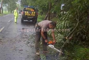 TULUS : Kapolsek Singgahan saat terjun langsung memotong pohon roboh di ruas jalan lintas provinsi Singgahan - Parengan