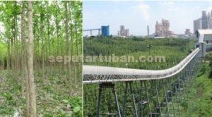 Reklamasi Pasca Tambang di Lokasi Glory Hole Petak 34 (23 Ha, 42.918 pohon) Kerja Sama dengan Perum Perhutani Tahun 2010