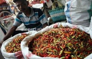 MERADANG : Pedagang cabai di Pasar Jatirogo