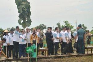 BUMIKU HIJAU : Presiden RI, Joko Widodo saat menanam pohon jati